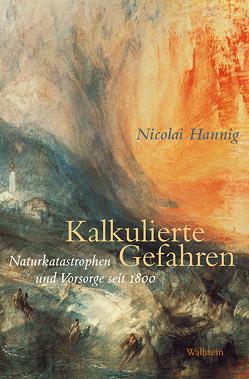 Kalkulierte Gefahren von Hannig,  Nicolai