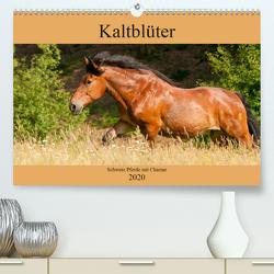 Kaltblüter – Schwere Pferde mit Charme (Premium, hochwertiger DIN A2 Wandkalender 2020, Kunstdruck in Hochglanz) von Bölts,  Meike