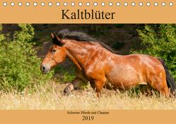 Kaltblüter – Schwere Pferde mit Charme (Tischkalender 2019 DIN A5 quer) von Bölts,  Meike