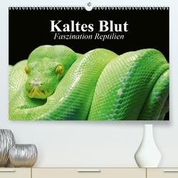 Kaltes Blut. Faszination Reptilien (Premium, hochwertiger DIN A2 Wandkalender 2021, Kunstdruck in Hochglanz) von Stanzer,  Elisabeth