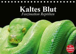 Kaltes Blut. Faszination Reptilien (Tischkalender 2019 DIN A5 quer) von Stanzer,  Elisabeth