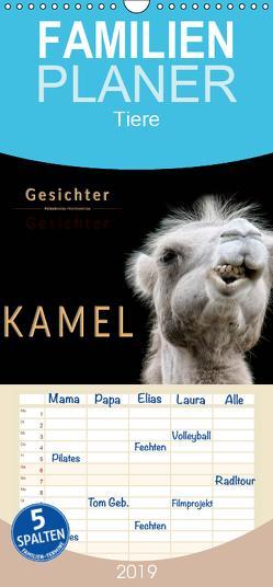 Kamel Gesichter – Familienplaner hoch (Wandkalender 2019 , 21 cm x 45 cm, hoch) von Roder,  Peter