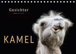 Kamel Gesichter (Tischkalender 2018 DIN A5 quer) von Roder,  Peter