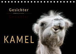 Kamel Gesichter (Tischkalender 2020 DIN A5 quer) von Roder,  Peter