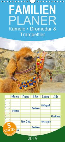 Kamele • Dromedar & Trampeltier – Familienplaner hoch (Wandkalender 2019 , 21 cm x 45 cm, hoch) von Stanzer,  Elisabeth