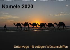 Kamele 2020 – Unterwegs mit zottigen WüstenschiffenCH-Version (Wandkalender 2020 DIN A2 quer) von Weber,  Melanie