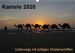 Kamele 2020 – Unterwegs mit zottigen WüstenschiffenCH-Version (Wandkalender 2020 DIN A3 quer) von Weber,  Melanie