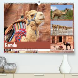 Kamele – Die freundlichen Gepäckträger (Premium, hochwertiger DIN A2 Wandkalender 2021, Kunstdruck in Hochglanz) von Herzog,  Michael