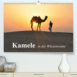 Kamele in der Wüstensonne (Premium, hochwertiger DIN A2 Wandkalender 2021, Kunstdruck in Hochglanz) von Stanzer,  Elisabeth