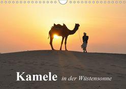 Kamele in der Wüstensonne (Wandkalender 2019 DIN A4 quer) von Stanzer,  Elisabeth