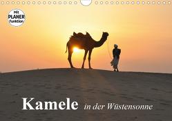 Kamele in der Wüstensonne (Wandkalender 2021 DIN A4 quer) von Stanzer,  Elisabeth