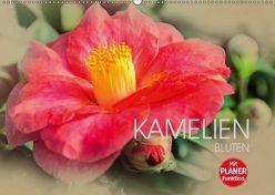 Kamelien Blüten (Wandkalender 2019 DIN A2 quer) von Meutzner,  Dirk