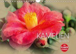 Kamelien Blüten (Wandkalender 2019 DIN A4 quer) von Meutzner,  Dirk
