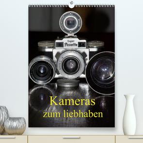 Kameras zum liebhaben (Premium, hochwertiger DIN A2 Wandkalender 2021, Kunstdruck in Hochglanz) von Burkhardt,  Bert
