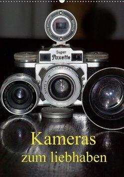 Kameras zum liebhaben (Wandkalender 2019 DIN A2 hoch)