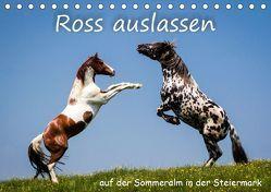 Kampf der Hengste – Ross auslassen auf der SommeralmAT-Version (Tischkalender 2019 DIN A5 quer) von Reisenhofer,  Richard