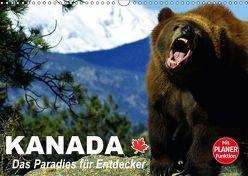 Kanada – Das Paradies für Entdecker (Wandkalender 2018 DIN A3 quer) von Stanzer,  Elisabeth