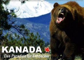 Kanada – Das Paradies für Entdecker (Wandkalender 2019 DIN A2 quer) von Stanzer,  Elisabeth