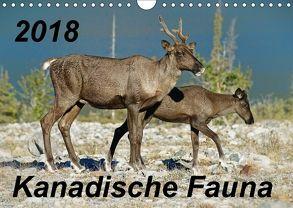 Kanadische Fauna 2018 (Wandkalender 2018 DIN A4 quer) von Schug,  Stefan