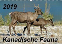 Kanadische Fauna 2019 (Wandkalender 2019 DIN A3 quer) von Schug,  Stefan