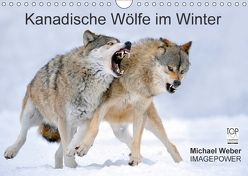 Kanadische Wölfe im Winter (Wandkalender 2018 DIN A4 quer) von Weber,  Michael