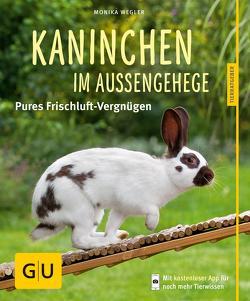 Kaninchen im Außengehege von Wegler,  Monika