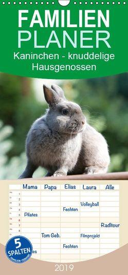 Kaninchen – knuddelige Hausgenossen – Familienplaner hoch (Wandkalender 2019 , 21 cm x 45 cm, hoch) von Verena Scholze,  Fotodesign