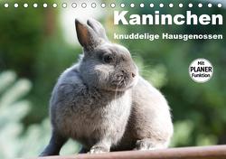 Kaninchen – knuddelige Hausgenossen (Tischkalender 2021 DIN A5 quer) von Verena Scholze,  Fotodesign