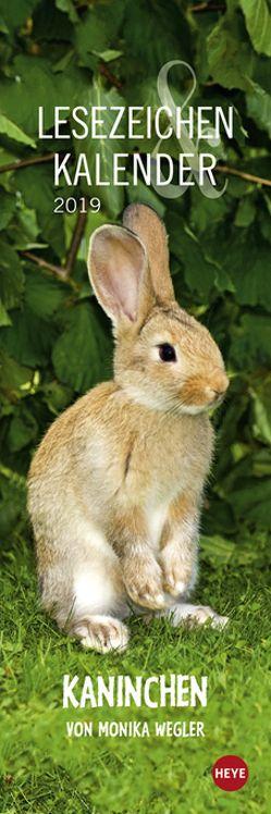 Kaninchen Lesezeichen & Kalender – Kalender 2019 von Heye, Wegler,  Monika