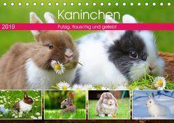 Kaninchen. Putzig, flauschig und geliebt (Tischkalender 2019 DIN A5 quer) von Hurley,  Rose