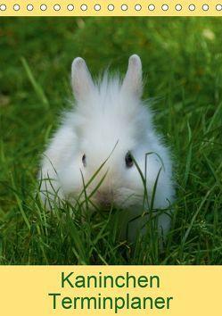 Kaninchen Terminplaner (Tischkalender 2019 DIN A5 hoch) von kattobello