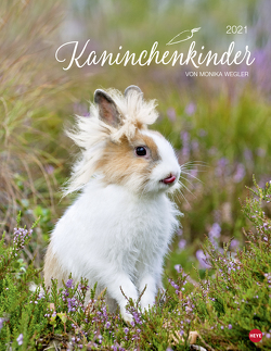 Kaninchenkinder Posterkalender Kalender 2021 von Heye, Wegler,  Monika