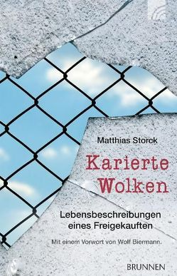 Karierte Wolken von Biermann,  Wolf, Storck,  Matthias