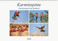 Karminspinte – Farbenrausch am Sambesi (Wandkalender 2018 DIN A2 quer) von Herzog,  Michael