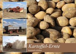 Kartoffel-Ernte – hautnah erleben (Wandkalender 2020 DIN A3 quer) von SchnelleWelten