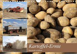 Kartoffel-Ernte – hautnah erleben (Wandkalender 2020 DIN A4 quer) von SchnelleWelten