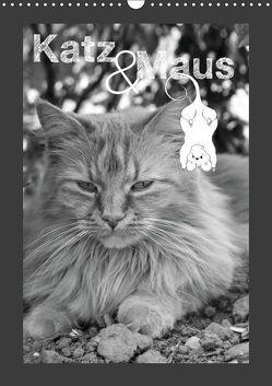 Katz & Maus (Wandkalender 2019 DIN A3 hoch) von Koch,  Julia