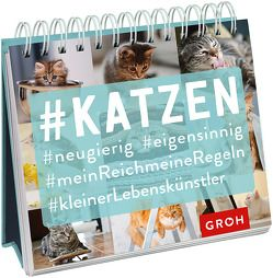#Katzen von Groh,  Joachim
