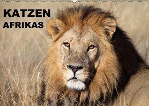 Katzen Afrikas (Wandkalender 2018 DIN A2 quer) von Herzog,  Michael