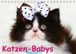 Katzen-Babys (Tischkalender immerwährend DIN A5 quer) von Stanzer,  Elisabeth