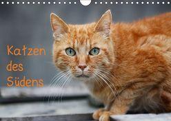 Katzen des Südens (Wandkalender 2019 DIN A4 quer) von Möckel / Lucy L!u,  Claudia