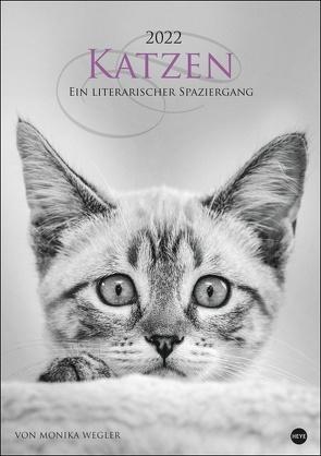 Katzen – Ein literarischer Spaziergang Kalender 2022 von Heye, Wegler,  Monika