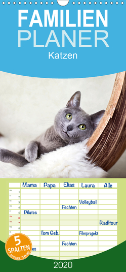 Katzen – Familienplaner hoch (Wandkalender 2020 , 21 cm x 45 cm, hoch) von Schwarz,  Nailia