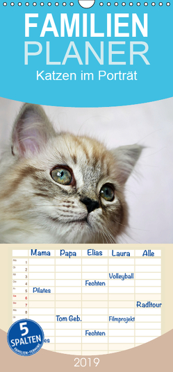 Katzen im Porträt / Geburtstagskalender – Familienplaner hoch (Wandkalender 2019 , 21 cm x 45 cm, hoch) von Chrystal,  Jennifer
