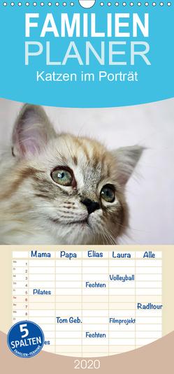 Katzen im Porträt / Geburtstagskalender – Familienplaner hoch (Wandkalender 2020 , 21 cm x 45 cm, hoch) von Chrystal,  Jennifer