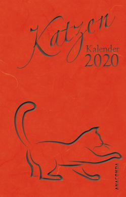 Katzen Kalender 2020 von John,  Waltraud