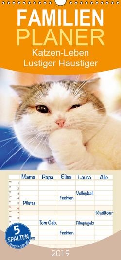 Katzen-Leben: Lustiger Haustiger – Familienplaner hoch (Wandkalender 2019 , 21 cm x 45 cm, hoch) von CALVENDO