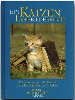 Katzen LeseBilderBuch von Luthardt,  Ernst O, Richner,  Werner