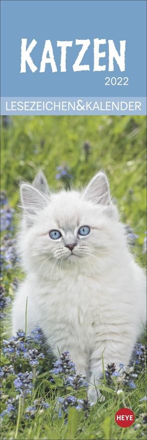 Katzen Lesezeichen & Kalender 2022 von Heye