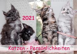 Katzen Persönlichkeiten 2021 (Wandkalender 2021 DIN A3 quer) von Rüberg,  Patrick